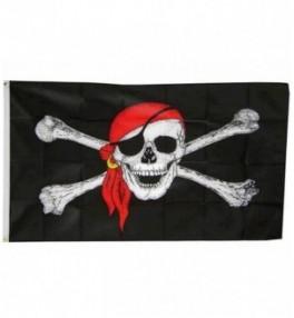 Piraadi lipp 60 x 90 cm