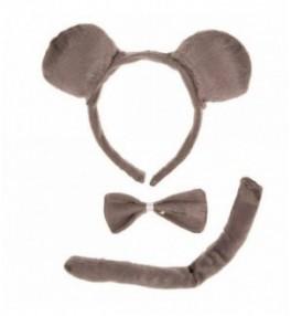 Komplekt hiir
