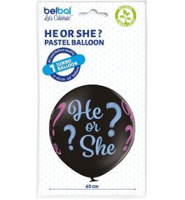 He or She B250 / 60 cm...
