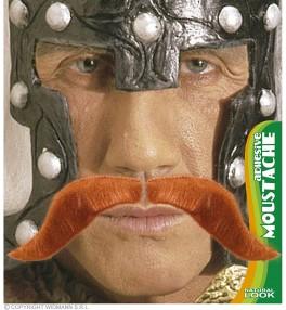 Vuntsid 'Viking'